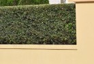 Abercrombie Decorative fencing 30