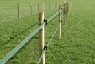 Abercrombie Electric fencing 4